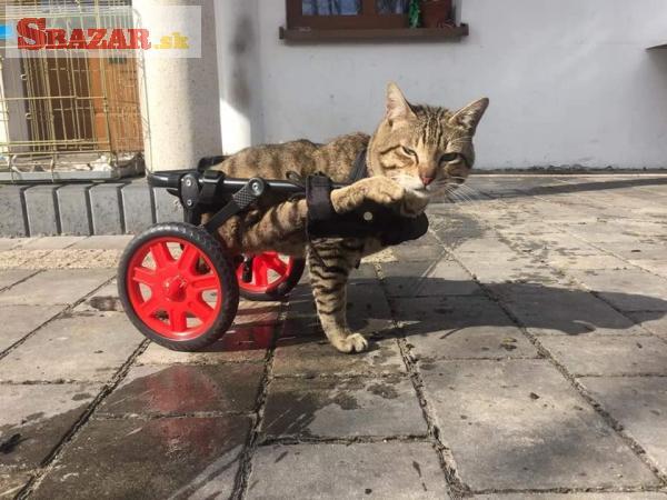 Invalidní vozík pro mačku, nebo psa.