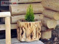 Odrezky z kmeňa stromov (s vydlabaným vnútrom)