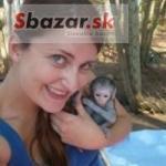 Samci A Samice Kapucínský opice pro prodej