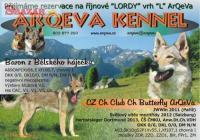 Československý vlčák s PP