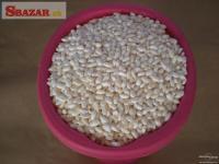 Ryžové burizony 240351