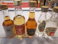 minilahvičky / lahve s alkoholem 262205